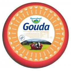 FORMAGGIO GOUDA FORMA FF.48% PAR.BAYERNLAND KG.12