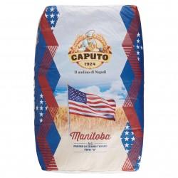 FARINA CAPUTO (0) MANITOBA KG.25